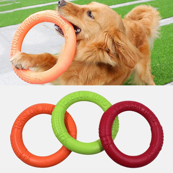 Dog Training Ring Toy