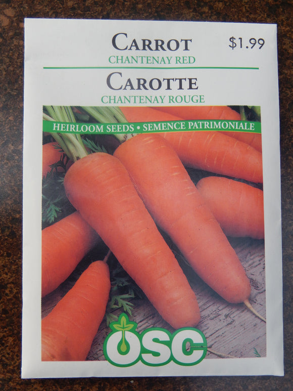 Carrot Chantenay Red