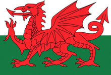 Load image into Gallery viewer, An image showing the Welsh flag. This flag has 2 horizontal stripes which are white on the top and green on the bottom. Overlaying this is a side view of a red dragon with a forked tongue, red wings, a red triangle pointed tail. The dragon is standing on