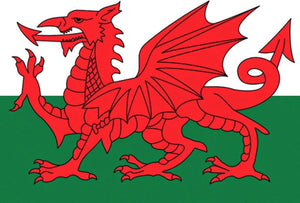An image showing the Welsh flag. This flag has 2 horizontal stripes which are white on the top and green on the bottom. Overlaying this is a side view of a red dragon with a forked tongue, red wings, a red triangle pointed tail. The dragon is standing on