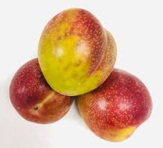NZ Organic Plums - Te Mata Gold 1kg