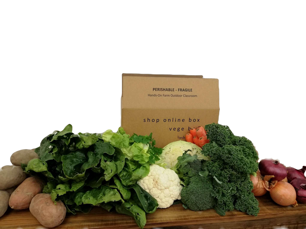 Organic/Spray Free - Family Vege Box