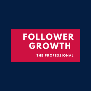 Instagram Follower Growth - Professional Plan