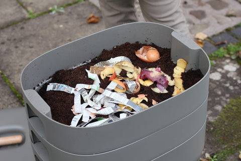 Compost bin with organic waste - wiggly wigglers
