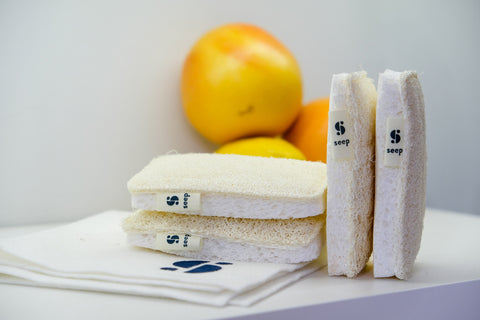 Seep plastic-free sponges UK - an easy plastic-free swap for 2021