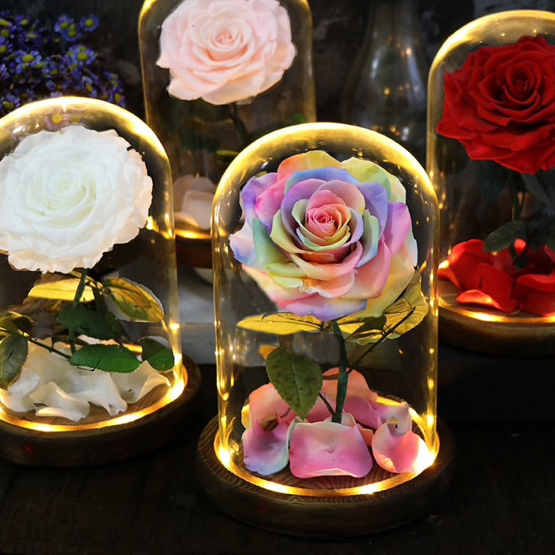 Infinity - Rose with LED Light