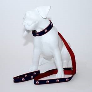 Del Dogs Collar & Leash