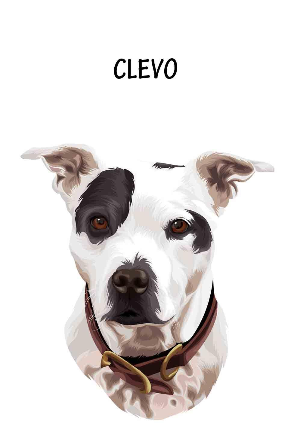 Minimalist Pet Portrait