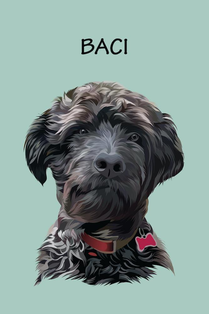 Minimalist Portrait - Custom Pet Portrait