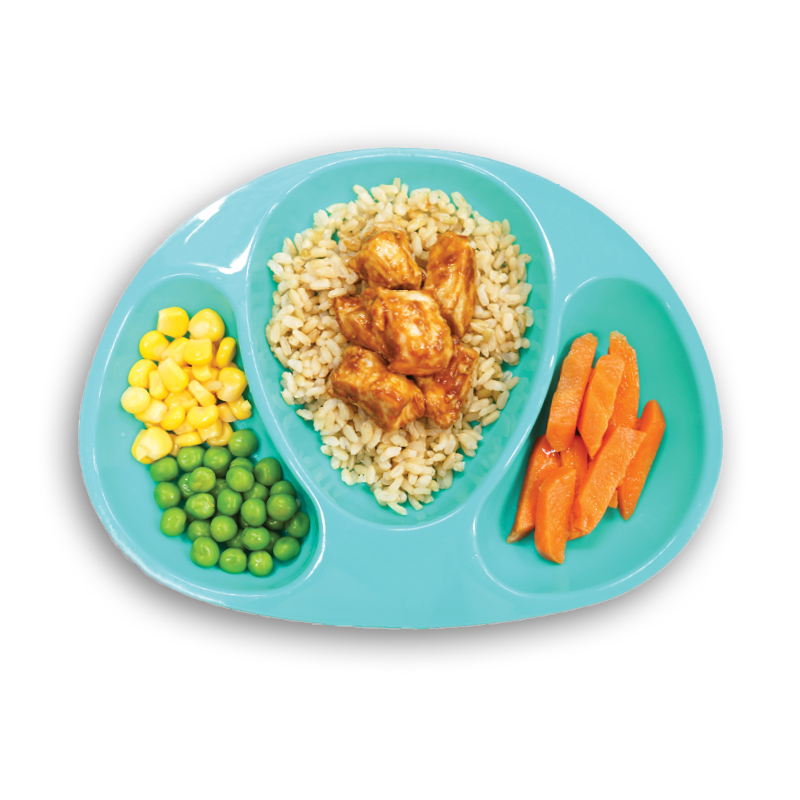 Kids Meals -Teriyaki Chicken