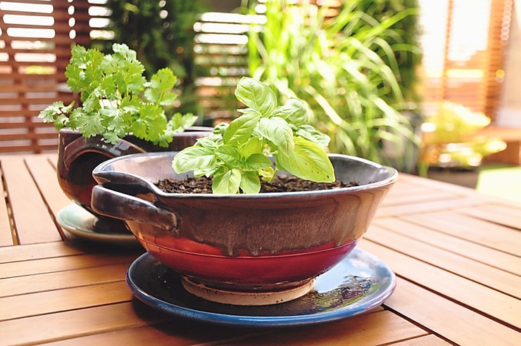 8 Innovative Ways to Repurpose Your Pots
