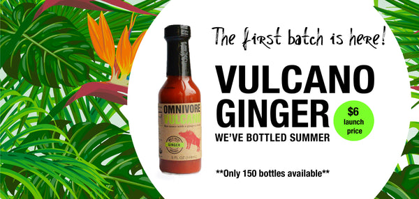 omnivore vulcano ginger is sugar free, organic, vegan and calorie free