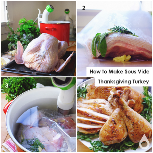 omnivore salt thanksgiving turkey with nomiku