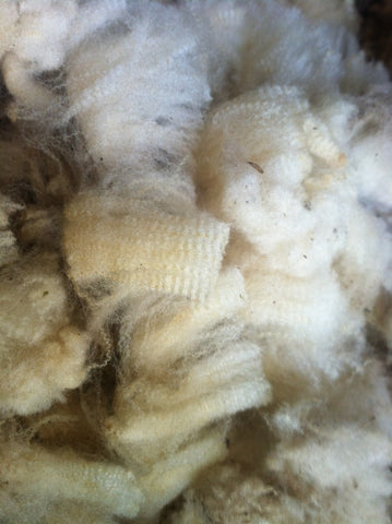 Sheep to Sweater: Wool 101