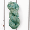 Lost in Trees Solid - 1 skein