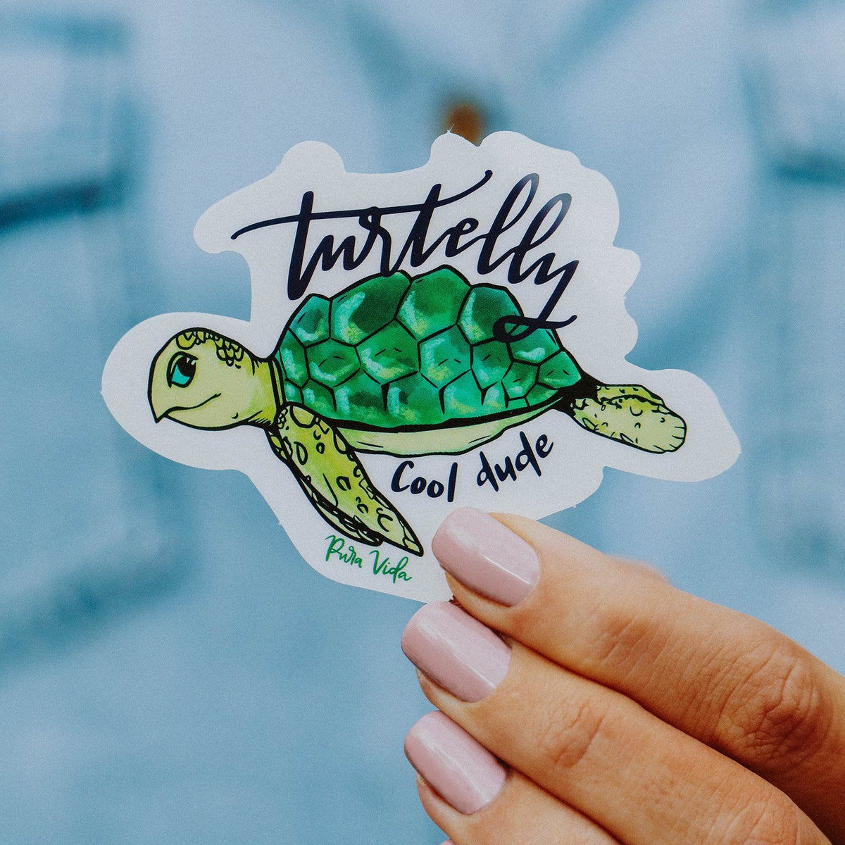 Turtelly Cool Sticker 2