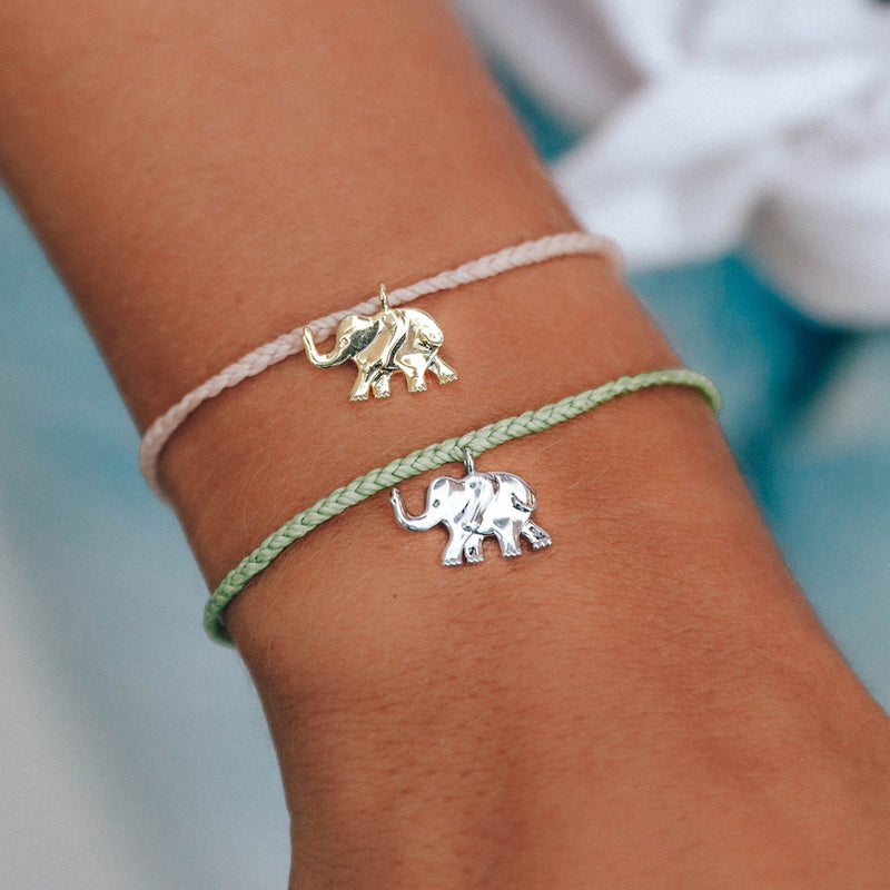 Save the Elephants Charm 5