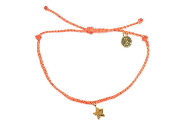 Gold Bitty Star Coral