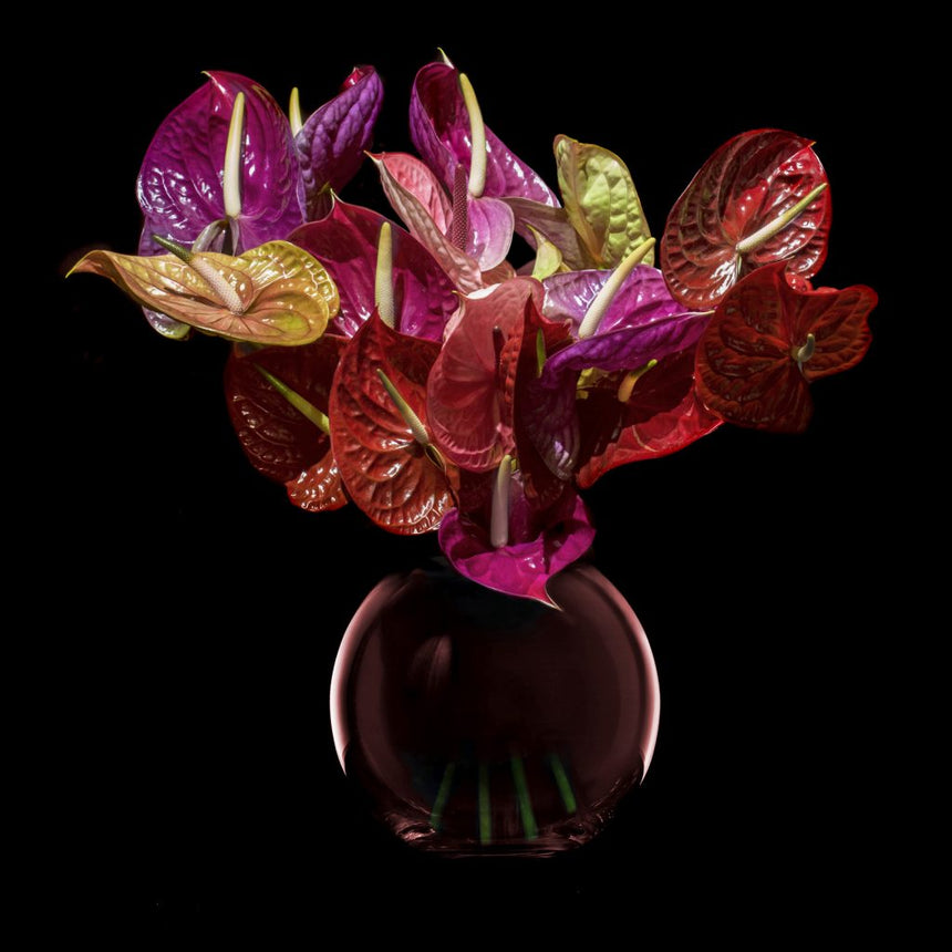 MARSANO 'Muse' Collection Vase - Berry / S