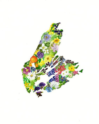Wildflowers of Cape Breton Print