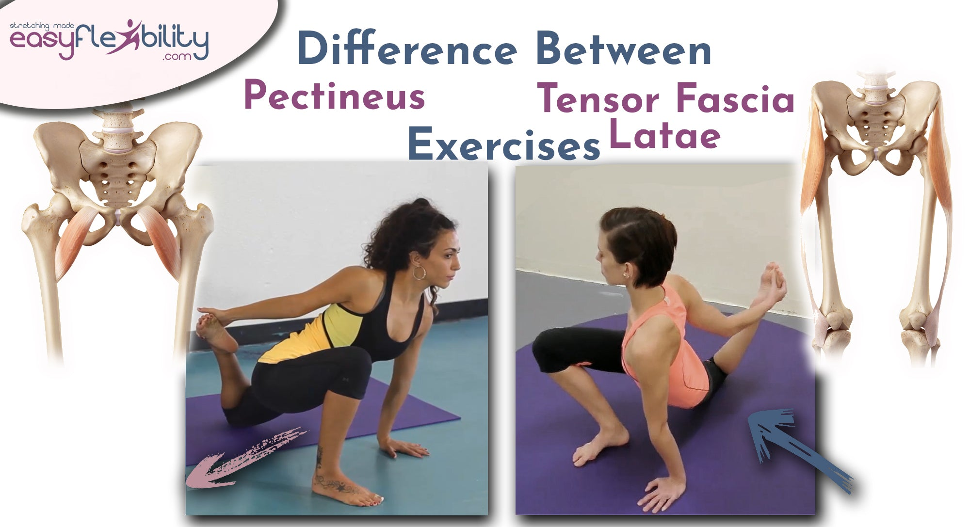 Differences between Pectineus ZST and Tensor fascia latae ZST