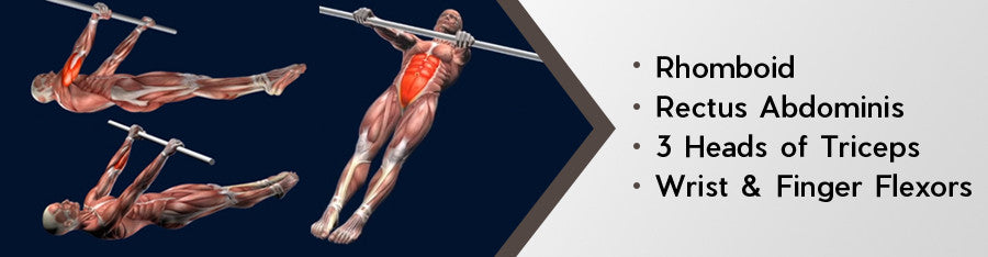 Gymnastics Front Lever Mastery