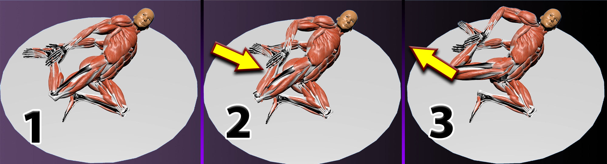 zaichik stretching technique ebook rectus femoris quads