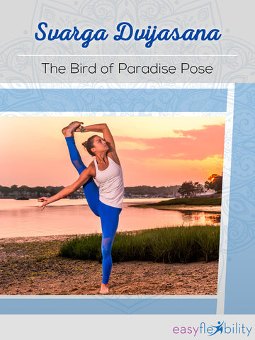 Svarga Dvijasana - The Bird of Paradise Pose
