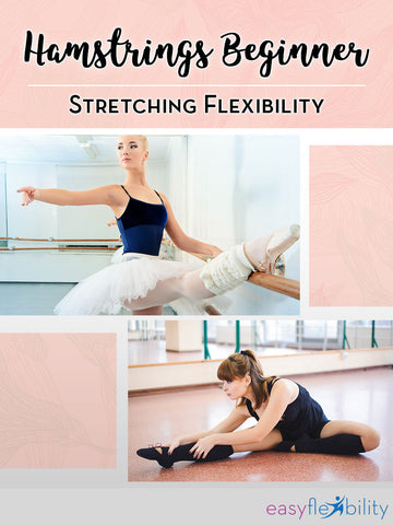 Hamstrings Beginner Stretching Flexibility