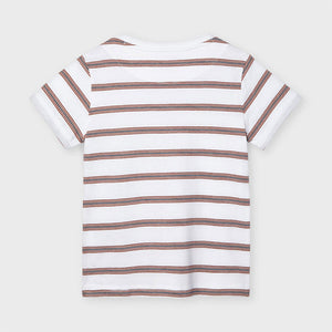 Stripes S/s T-shirt for Boy Clay