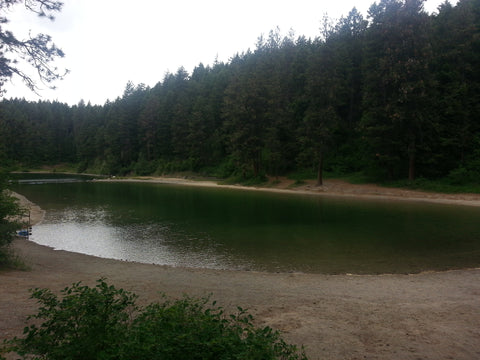 Farragut State Park swimming area, Lake Pend Oreille