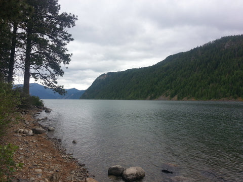 Lake Pend Oreille shoreline