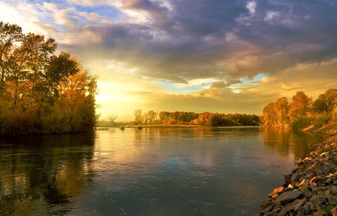 autumn along a river