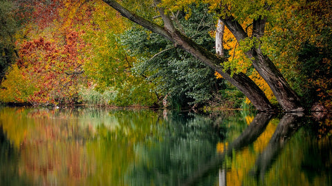 autumn by lake