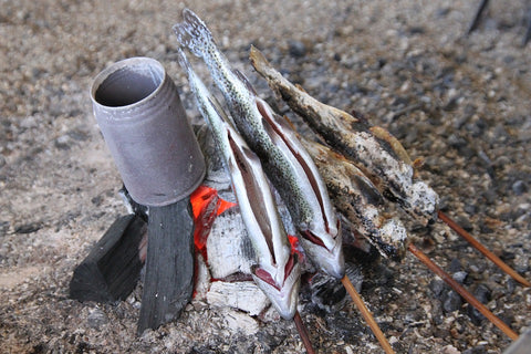 Fish cooking on campfire