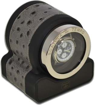 Asphalt Ostrich Scatola del Tempo Watch Winder