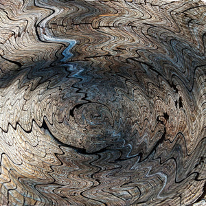 Twirl Square Abstract Nature Fine Art Print Tree Rings Natural