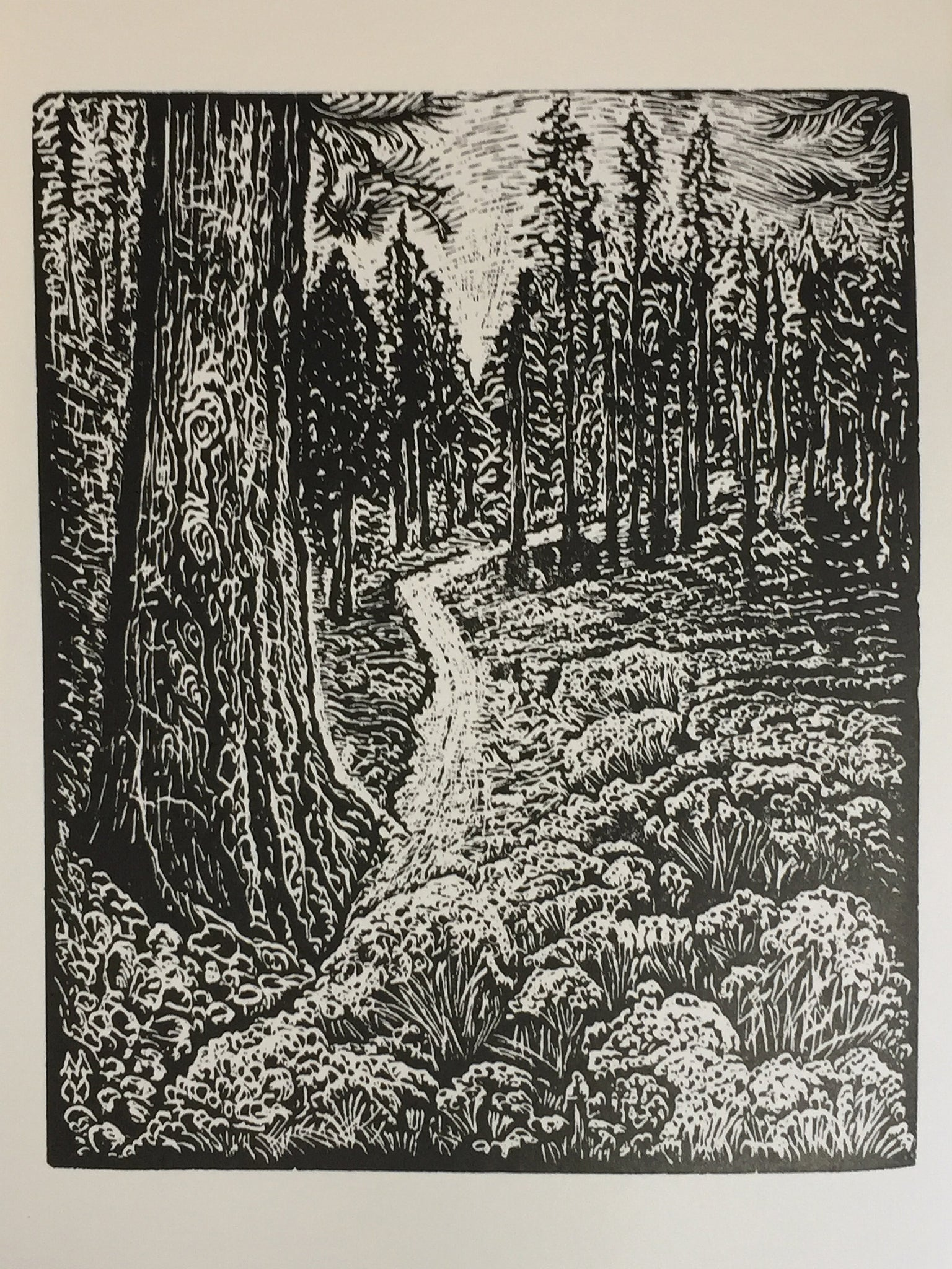 Original Wood Engraving Between Two Pines hiking trail in mountain pine forest