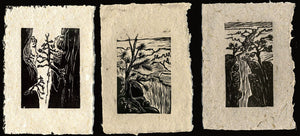 SET of 3 Original Woodcut Prints Grand Canyon Hikers Views Rim Trail Landscapes on Handmade Paper