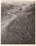 Original Wood Engraving Print Let River Answer Colorado River Desert Landscape