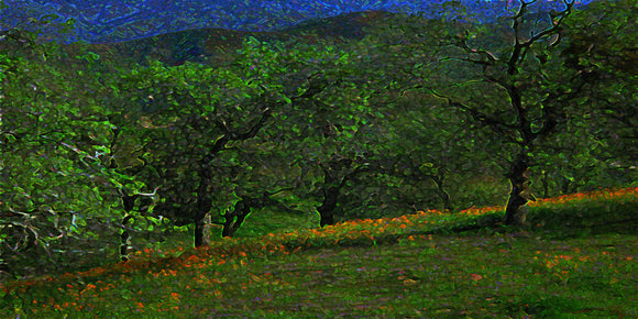 California Spring Dusk Nature Fine Art Print Tree Landscape Moody Green