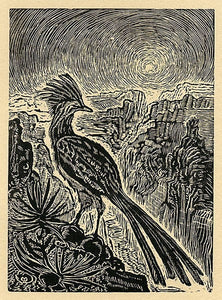 Desert Rooster Wood Engraving Southwest Road Runner Desert Canyon Landscape