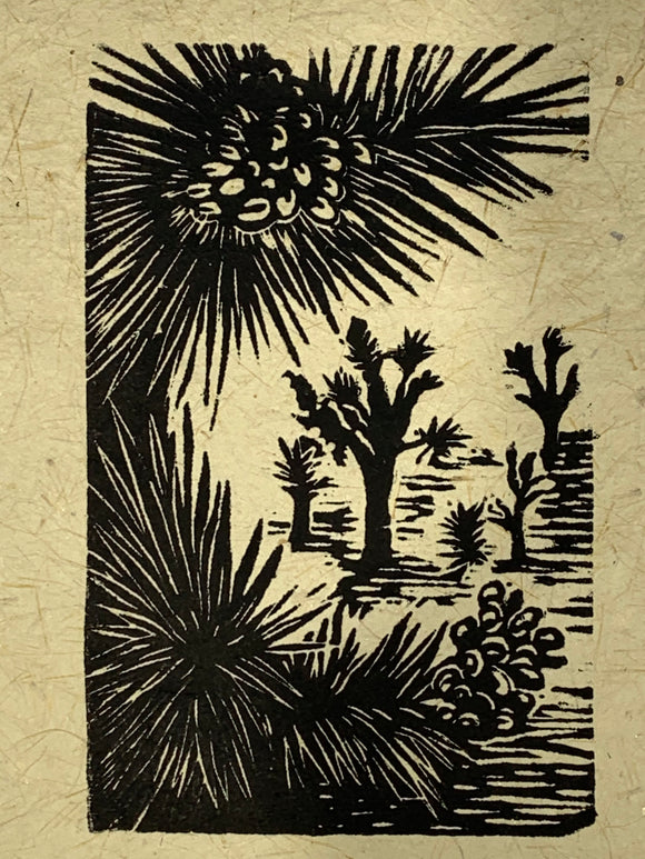 Joshua Tree Forest Fruit and Flower Desert Landscape