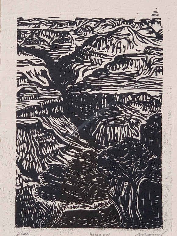 Original Woodcut The Scar Grand Canyon Colorado River Landscape Handmade Paper