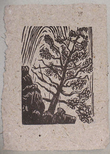 Original Woodcut Print Landscape Lone Pine in Zion National Park Canyon Wall