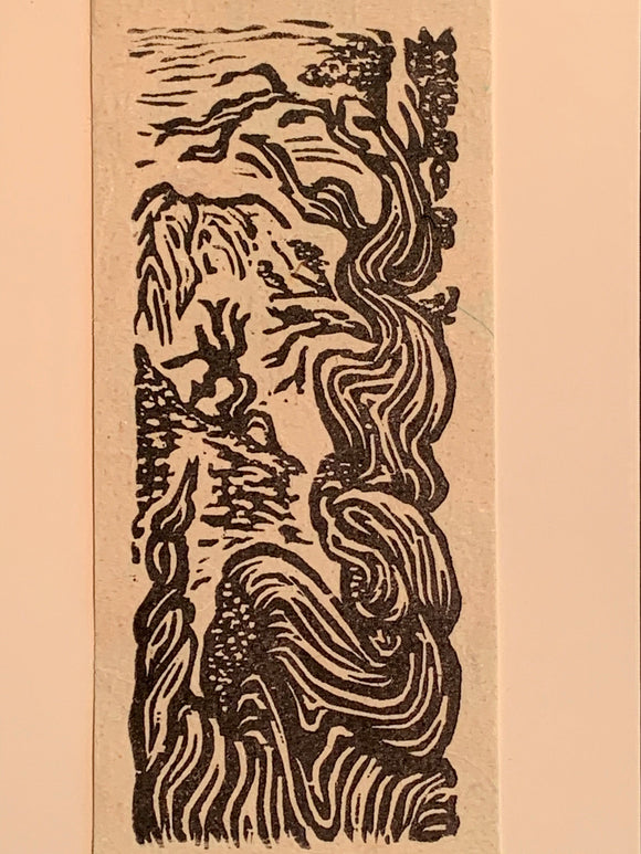 Ancient Bristlecone Pine Tree Small Original Woodcut from Alpine Mountain Trees
