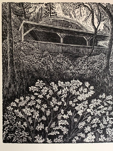 Hidden cabin in the woods John Muir poem wood engraving sunshine forest
