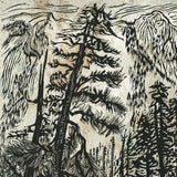 White Pine Forest Art Print Woodcut Color Background Green Deep Woods