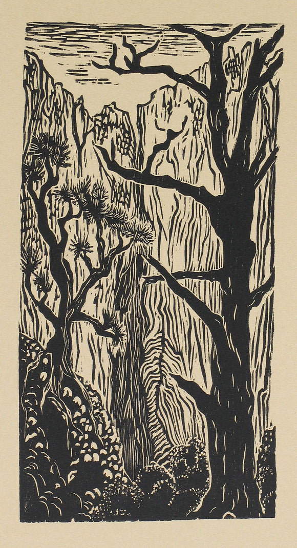 Original woodcut Southwest landscape Zion National Park hidden canyon