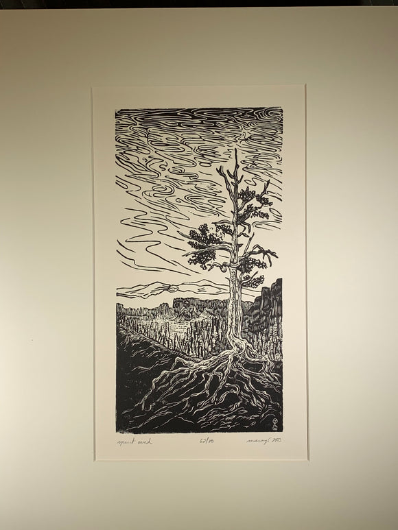 MATTED 20X16 Spirit Wind Original Woodcut National Park Rocks Hoodoo Hiking